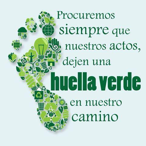Dia Mundial del Ambiente 07 junioWEB G