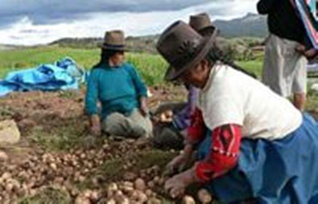 Agricultura Cultura Ecologica WEB G